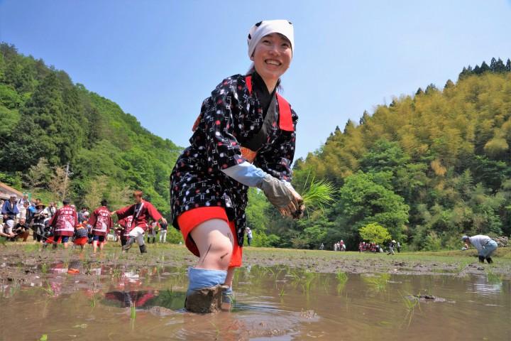 【結果発表】いるま花田植え2016フォトコンテスト