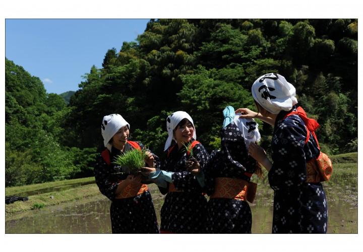09.koyasu
