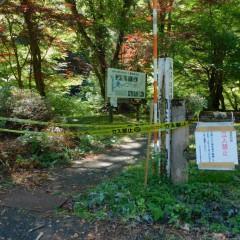 八重滝の立ち入り禁止について(R3.8.5)